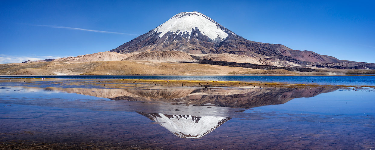 One of the highest lakes with one of the most beautiful Volcano on earth: Lago Chungará and Parinacota