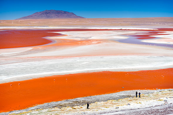 The only red laguna on earth: Laguna Colorada