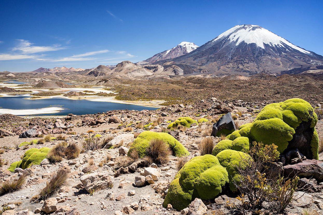 Paradies for landscape photographers: Volcano Parinacota, Lauca National Park in northern Chile